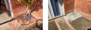 ProBuilder-Repairs-tree-causing-termites