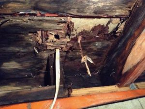 Probuilder-Repairs-Rotten-Bathroom-Floors